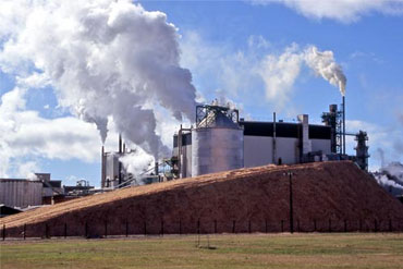 PAPER AND PULP PLANT